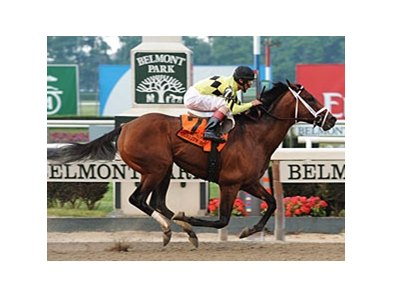 "Quality Road remained perfect in three starts this year after winning the Metropolitan Handicap at Belmont. <br><a target=""blank"" href=""http://www.bloodhorse.com/horse-racing/photo-store?ref=http%3A%2F%2Fpictopia.com%2Fperl%2Fgal%3Fprovider_id%3D368%26ptp_photo_id%3D9035384%26ref%3Dstory"">Order This Photo</a>"