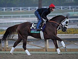Fast Bullet works at Santa Anita for the Breeders' Cup.