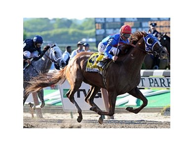 "Summer Bird's upset victory in the Belmont Stakes capped a wild and wacky Triple Crown season.<br><a target=""blank"" href=""http://www.bloodhorse.com/horse-racing/photo-store?ref=http%3A%2F%2Fpictopia.com%2Fperl%2Fgal%3Fprovider_id%3D368%26ptp_photo_id%3D8205141%26ref%3Dstory"">Order This Photo</a>"