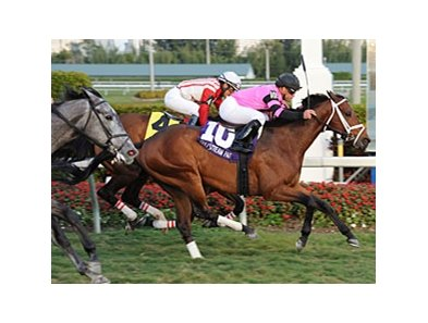 "Silver Medallion won the Fort Lauderdale Stakes at Gulfstream Jan. 14.<br><a target=""blank"" href=""http://www.bloodhorse.com/horse-racing/photo-store?ref=http%3A%2F%2Fpictopia.com%2Fperl%2Fgal%3Fprovider_id%3D368%26ptp_photo_id%3D9799148%26ref%3Dstory"">Order This Photo</a>"
