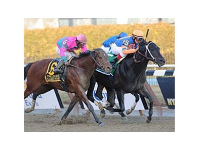 "Calibrachoa holds off Caleb's Posse to win the Tom Fool Handicap.<br><a target=""blank"" href=""http://www.bloodhorse.com/horse-racing/photo-store?ref=http%3A%2F%2Fpictopia.com%2Fperl%2Fgal%3Fprovider_id%3D368%26ptp_photo_id%3D9822829%26ref%3Dstory"">Order This Photo</a>"