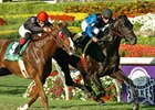 "Einstein won the Gulfstream Park Turf Handicap in 2008. <br><a target=""blank"" href=""http://www.bloodhorse.com/horse-racing/photo-store?ref=http%3A%2F%2Fpictopia.com%2Fperl%2Fgal%3Fprovider_id%3D368%26ptp_photo_id%3D3655479%0D%0A%26ref%3Dstory"">Order This Photo</a>"