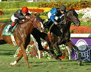 Einstein holds off Dancing Forever to take the Gulfstream Park Turf.
