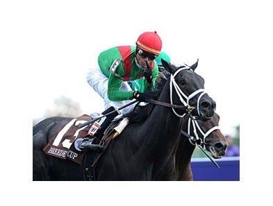 Pluck