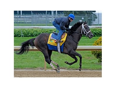 Soldat at Churchill Downs.
