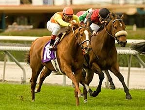 Foxysox wins the 2009 Tuzla Handicap