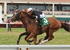 Simmard won the Mac Diarmida Stakes at Gulfstream Park on Feb. 26.