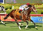 "Mshawish will try the dirt again in the Hal's Hope Stakes.<br><a target=""blank"" href=""http://photos.bloodhorse.com/AtTheRaces-1/At-the-Races-2014/i-9CsTdP2"">Order This Photo</a>"