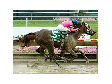 Blind Luck most recently won the Delaware Oaks by a nose on July 10.
