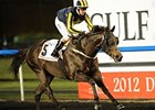 Krypton Factor flies home in the Dubai Golden Shaheen.