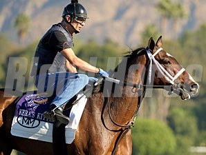 Kera's Kitten at the 2009 Breeders' Cup