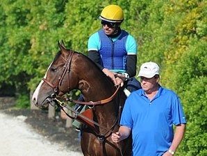 Bodemeister is Virginia Horse of the Year