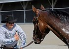 "Chip Woolley and Mine That Bird<br><a target=""blank"" href=""http://www.bloodhorse.com/horse-racing/photo-store?ref=http%3A%2F%2Fpictopia.com%2Fperl%2Fgal%3Fprovider_id%3D368%26ptp_photo_id%3D8185221%26ref%3Dstory"">Order This Photo</a>"