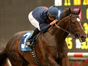 Mr. Commons wins the 2011 Oceanside.