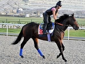 Richard's Kid Dubai World Cup Week 2010