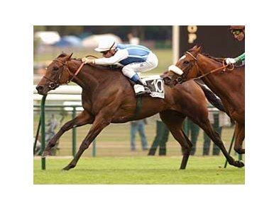 Goldikova shown winning the Prix du Moulin