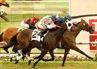 "Wasted Tears defeated Lilly Fa Pootz by a nose to register her 10th consecutive win on turf in Del Mar's John C. Mabee Stakes.<br><a target=""blank"" href=""http://www.bloodhorse.com/horse-racing/photo-store?ref=http%3A%2F%2Fpictopia.com%2Fperl%2Fgal%3Fprovider_id%3D368%26ptp_photo_id%3D9145828%26ref%3Dstory"">Order This Photo</a>"