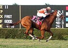 Presious Passion lit up the board at 67-1 odds in winning the W.L. McKnight Handicap.