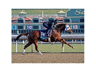 "Groupie Doll<br><a target=""blank"" href=""http://photos.bloodhorse.com/BreedersCup/2013-Breeders-Cup/Breeders-Cup/32986083_QMHXWK#!i=2871191714&k=FRK3w46"">Order This Photo</a>"