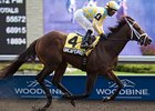 Uncaptured Seeks Rebound in Matt Winn Stakes