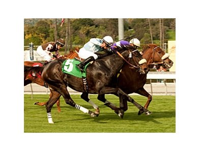 "Spring Style (inside) holds off Harmonious to win the Robert J. Frankel Stakes. <br><a target=""blank"" href=""http://www.bloodhorse.com/horse-racing/photo-store?ref=http%3A%2F%2Fpictopia.com%2Fperl%2Fgal%3Fprovider_id%3D368%26ptp_photo_id%3D9352602%26ref%3Dstory"">Order This Photo</a>"