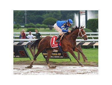 "Alpha<br><a target=""blank"" href=""http://photos.bloodhorse.com/AtTheRaces-1/at-the-races-2012/22274956_jFd5jM#!i=1992687827&k=HF2RS4S"">Order This Photo</a>"