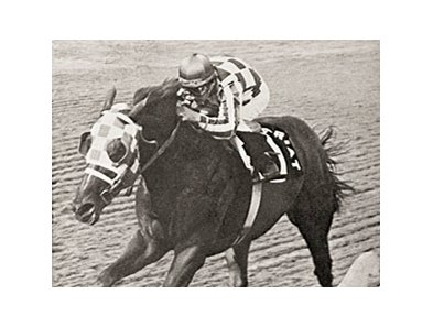 Secretariat wins the 1973 Arlington Invitational.