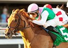 Seek Again to Try Again in Turf Classic