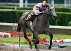 Undefeated Indyanne Romps in Azalea