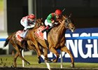 "Animal Kingdom charges to victory in the Dubai World Cup.<br><a target=""blank"" href=""http://photos.bloodhorse.com/AtTheRaces-1/at-the-races-2013/2725"">Order This Photo</a>"