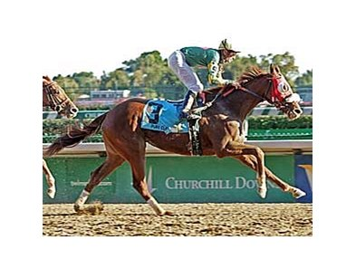 Pure Clan won a pair of graded races at Churchill Downs last fall.
