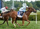 Free as a Bird