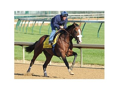 "Union Rags galloped 1 1/2 miles April 27 at Churchill Downs.<br><a target=""blank"" href=""http://photos.bloodhorse.com/TripleCrown/2012-Triple-Crown/Works/22611108_LR3wcn#!i=1816040993&k=zMFZgBF"">Order This Photo</a>"