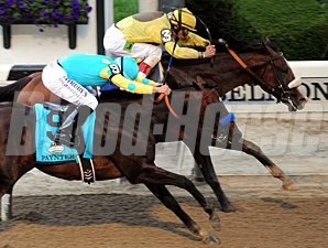 Union Rags and Paynter battle in the Belmont Stakes.