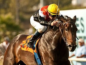 Marketing Mix Retired to Glen Hill Farm