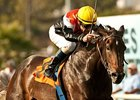 Marketing Mix won the 2013 Gamely Stakes.