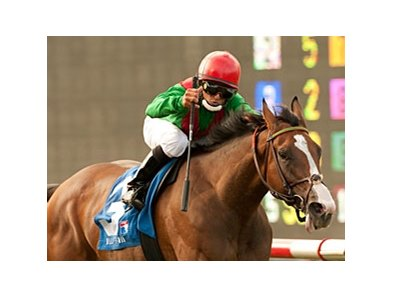 Grade I winner Summer Soiree makes her 2012 debut in the Ballston Spa Stakes.