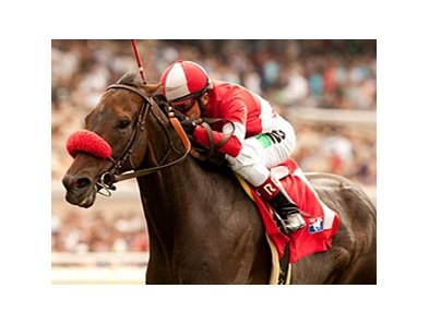 Norvsky faces 6 in the Hollywood Turf Cup.