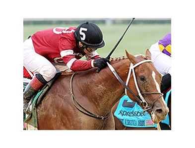 Tapiture faces 9 in the Oaklawn Handicap.