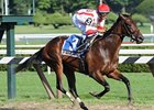 "Worstcasescenario comes home strong to win the Adirondack.<br><a target=""blank"" href=""http://www.bloodhorse.com/horse-racing/photo-store?ref=http%3A%2F%2Fpictopia.com%2Fperl%2Fgal%3Fprovider_id%3D368%26ptp_photo_id%3D8415448%26ref%3Dstory"">Order This Photo</a>"