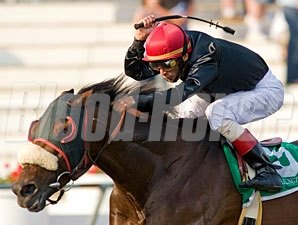 Vacation wins the 2009 Hanshin Cup