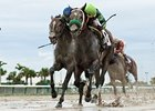 Imperial Czar (inside) holds off Numb Lips to win the Miami Mile Handicap.