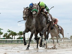 Imperial Czar wins the 2012 Miami Mile Handicap.