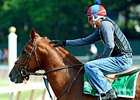 Animal Kingdom 2-1 Belmont Choice; Post 9