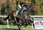 Boisterous Looks to Add Another Stakes Win