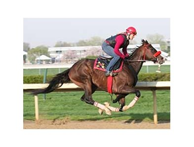 Recapturetheglory will miss the Preakness due to a fever.