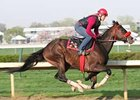 Recapturetheglory works five furlongs at Churchill Downs April 17.