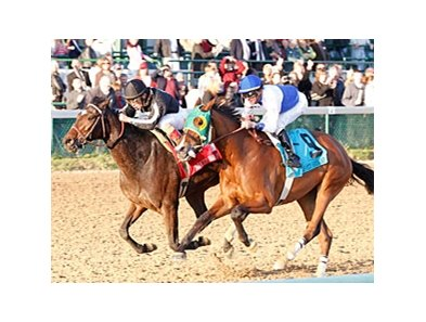 Afleeting Lady (right) faces 8 in the Molly Pitcher Stakes at Monmouth Park.