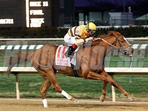 Wise Dan wins the 2011 Clark.