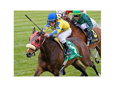 "Daisy Devine and James Graham cannot be caught in the Jenny Wiley. <br><a target=""blank"" href=""http://photos.bloodhorse.com/AtTheRaces-1/at-the-races-2012/22274956_jFd5jM#!i=1794380505&k=Z7fsD8M"">Order This Photo</a>"